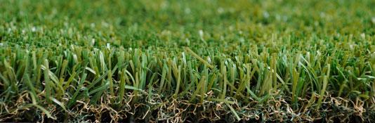 דוגמא של דשא סינטטי